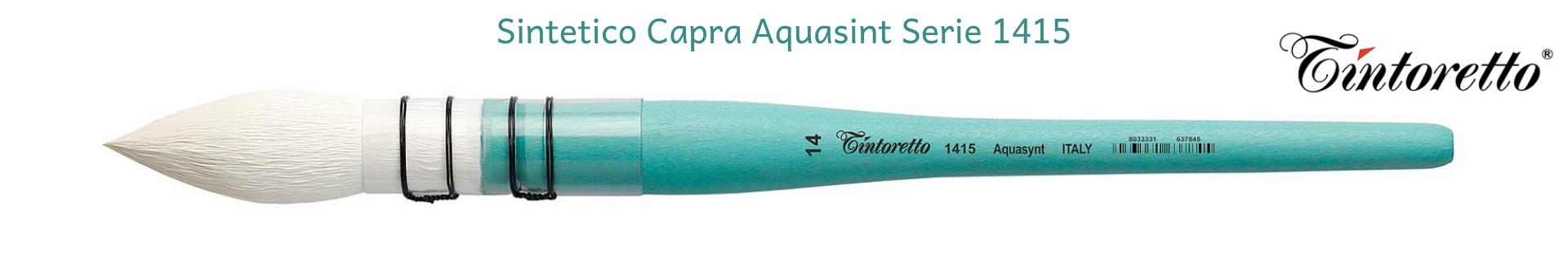 Tintoretto Capra Aquasynt 1415